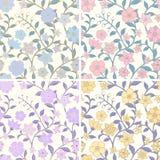 floral άνευ ραφής σύνολο προτύπ&omeg Στοκ Εικόνες