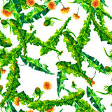 Floral άνευ ραφής patterny πικραλίδες ellow Watercolor Εκλεκτής ποιότητας αναδρομικό θερινό υπόβαθρο με τα wildflowers απεικόνιση αποθεμάτων