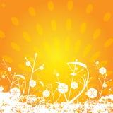 floral ήλιος ανασκόπησης Στοκ Εικόνες