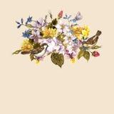 Floral αναδρομική κάρτα άνοιξη με τα σπουργίτια Στοκ Φωτογραφία