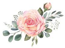 Floral ανθοδέσμη Watercolor με τα τριαντάφυλλα και τον ευκάλυπτο ελεύθερη απεικόνιση δικαιώματος