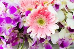 Floral ανθοδέσμη των ορχιδεών Στοκ Εικόνες