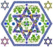 Floral απομονωμένο αστέρι του Δαβίδ Στοκ εικόνες με δικαίωμα ελεύθερης χρήσης