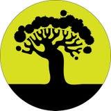 floral δέντρο σκιαγραφιών Στοκ Εικόνες