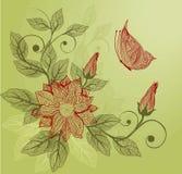 floral διάνυσμα πεταλούδων αν&alp Στοκ Εικόνες