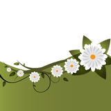 floral διάνυσμα πρόσκλησης ανα& Στοκ Φωτογραφία