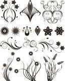 floral διάνυσμα σχεδίου Στοκ φωτογραφία με δικαίωμα ελεύθερης χρήσης