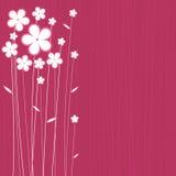 floral διάνυσμα σχεδίου απεικόνιση αποθεμάτων