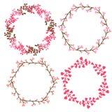 Floral διακόσμηση πλαισίων Διανυσματικά διακοσμητικά στοιχεία στο ρόδινο χρώμα μπορέστε να χρησιμοποιήσετε για την κάρτα γενεθλίω Στοκ εικόνα με δικαίωμα ελεύθερης χρήσης