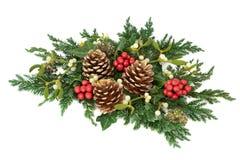 Floral διακόσμηση Χριστουγέννων Στοκ Εικόνες