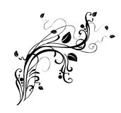 floral διακόσμηση Στοκ Φωτογραφία