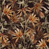 Floral διανυσματικό σχέδιο Watercolor Στοκ Φωτογραφία