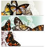 Floral επαγγελματικές κάρτες που τίθενται με τις πεταλούδες Στοκ Φωτογραφία
