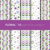 Floral ζωηρόχρωμα σχέδια Στοκ Φωτογραφίες