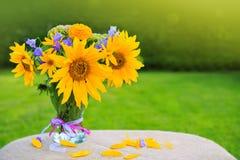 floral ηλίανθοι λουλουδιών πεδίων κίτρινοι πρόσθετες διακοπές μορφής καρτών Στοκ φωτογραφίες με δικαίωμα ελεύθερης χρήσης