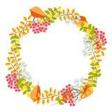 Floral διάνυσμα στεφανιών ανθοδεσμών πτώσης διανυσματική απεικόνιση