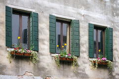 Floral διακοσμήσεις στα παλαιά παράθυρα με τα παραθυρόφυλλα Στοκ φωτογραφία με δικαίωμα ελεύθερης χρήσης