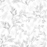 Floral διακόσμηση στο ύφος των γραμμών σκίτσων Στοκ Εικόνα