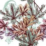 Floral διανυσματικό άνευ ραφής υπόβαθρο με το φύλλωμα κρητιδογραφιών Στοκ Εικόνες