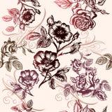 Floral διανυσματικό σχέδιο Στοκ φωτογραφία με δικαίωμα ελεύθερης χρήσης