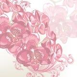 Floral διανυσματικό υπόβαθρο με τις ορχιδέες Στοκ εικόνα με δικαίωμα ελεύθερης χρήσης