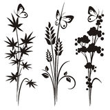 floral ιαπωνική σειρά σχεδίου διανυσματική απεικόνιση