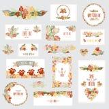 Floral κάρτες καθορισμένες Στοκ Εικόνες