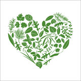 Floral καρδιά φιαγμένη από χορτάρια Στοκ Εικόνες