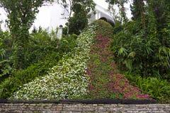 Floral καταρράκτης, λουλούδια τέχνης Στοκ Φωτογραφία