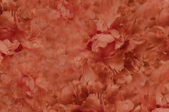 Floral κόκκινο όμορφο υπόβαθρο Ταπετσαρίες κόκκινου peony λουλουδιών convolvulus σύνθεσης ανασκόπησης λευκό τουλιπών λουλουδιών Κ Στοκ φωτογραφία με δικαίωμα ελεύθερης χρήσης