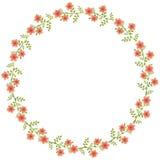 Floral κύκλος Στοκ Εικόνα