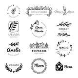 Floral λογότυπο διακοσμήσεων Το πλαίσιο στεφανιών φύλλων δαφνών, doodle ετικέτα φύλλων λουλουδιών και εκλεκτής ποιότητας λουλούδι διανυσματική απεικόνιση