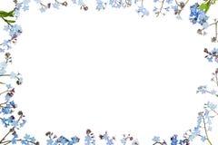 floral με ξεχάστε όχι διακόσμηση Στοκ εικόνες με δικαίωμα ελεύθερης χρήσης
