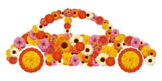 Floral μορφή αυτοκινήτων Στοκ Εικόνα