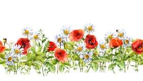 Floral οριζόντια σύνορα Λουλούδια λιβαδιών Watercolor, χλόη, χορτάρια πλαίσιο άνευ ραφής ελεύθερη απεικόνιση δικαιώματος
