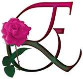 Floral ΠΗΓΉ γραμμάτων Ε απεικόνιση αποθεμάτων