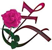 Floral ΠΗΓΉ γραμμάτων Ζ διανυσματική απεικόνιση