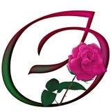 Floral ΠΗΓΉ γραμμάτων Ο ελεύθερη απεικόνιση δικαιώματος