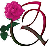Floral ΠΗΓΉ γραμμάτων Q διανυσματική απεικόνιση