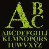 Floral πηγή που γίνεται με τα φύλλα, φυσικές επιστολές αλφάβητου καθορισμένες, vect ελεύθερη απεικόνιση δικαιώματος