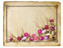 floral πλαίσιο αναδρομικό Στοκ Φωτογραφίες