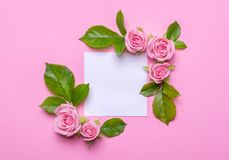 Floral πλαίσιο με τα ρόδινα τριαντάφυλλα σε ένα ρόδινο υπόβαθρο Γωνίες των λουλουδιών με την κενή θέση για το κείμενο Στοκ φωτογραφία με δικαίωμα ελεύθερης χρήσης