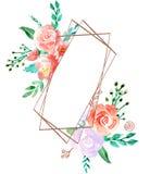 Floral πλαίσιο Watercolor με τα χρυσά σύνορα χαλκού - ανθίστε την απεικόνιση για το γάμο, επέτειος, γενέθλια, προσκλήσεις, ρομαντ διανυσματική απεικόνιση