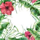 Floral πλαίσιο Watercolor με την τροπικά πρασινάδα και τα λουλούδια Το χέρι χρωμάτισε τα εξωτικά σύνορα με τα φύλλα φοινίκων, μπα ελεύθερη απεικόνιση δικαιώματος