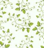 floral πράσινο πρότυπο άνευ ραφή&sigma Στοκ εικόνα με δικαίωμα ελεύθερης χρήσης