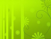 floral πράσινο φως ανασκόπησης Στοκ Εικόνες