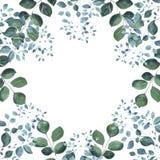 Floral προ-γίνοντα τετραγωνικό πλαίσιο, πρασινάδα κήπων απεικόνιση αποθεμάτων