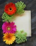 floral πρόσκληση αρκετά Στοκ φωτογραφία με δικαίωμα ελεύθερης χρήσης