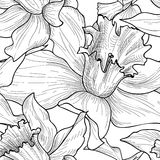 floral πρότυπο άνευ ραφής Υπόβαθρο λουλουδιών doodle Floral engra Στοκ Εικόνες