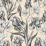 floral πρότυπο άνευ ραφής φως λουλουδιών ανασκόπησης playnig Floral άνευ ραφής κείμενο Στοκ Εικόνα